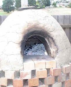 Earth wood fired oven